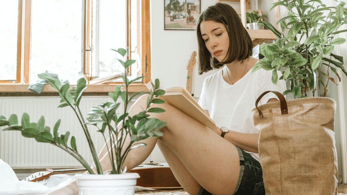 Stoere kamerplant voor bij jou in huis